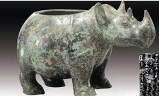 频危物种保护,任重道远而紧迫――犀牛
